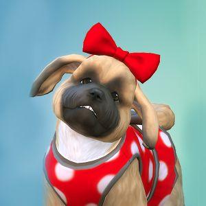download the sims 4 pets gratis